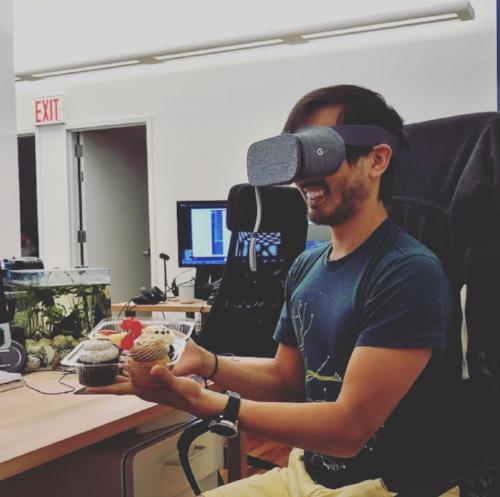 Robin in VR